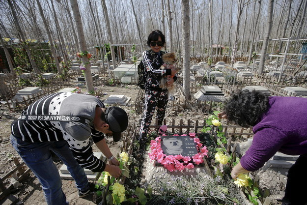 "In China, spring is a time to think about the past. During Qingming, commonly known as ""Tomb-Sweeping Day,"" millions of Chinese people visit cemeteries to pay tribute to their deceased family members — which in recent years has extended to pets."