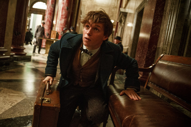 We know that Eddie Redmayne plays Newt Scamander, the famed magical zoologist.