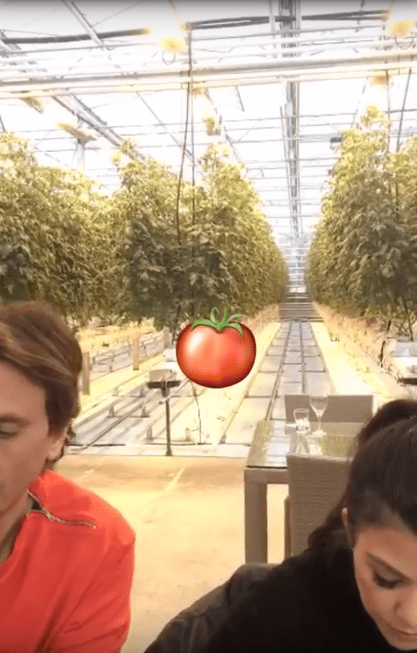 Yesterday, a bunch of the Kardashian clan headed out to a tomato farm and ate a bunch of tomato foods.