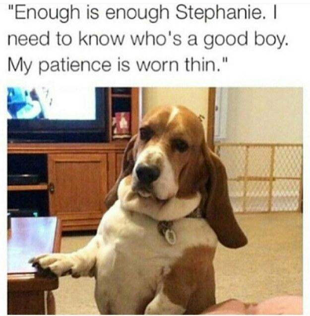 Who's a good boy: