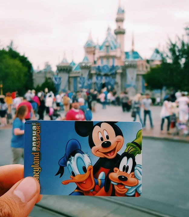 Annual passes are a staple in your wallet.