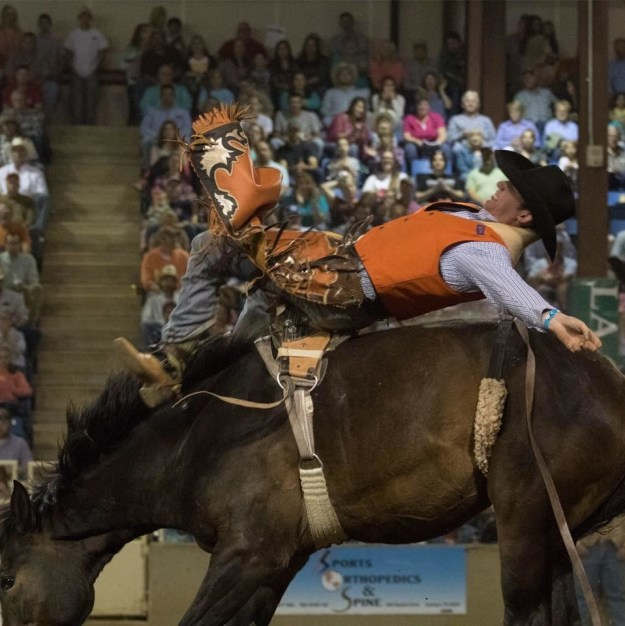 Coy Lutz, a bareback rider, was trampled during his performance at the rodeo in Pilesgrove, police spokesperson Sgt. Jeff Flynn told BuzzFeed News.