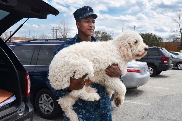 This fluffy cloud who is living the dream, getting carried from place to place.