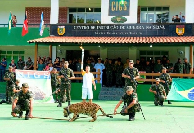 A jaguar was shot and killed on Monday following the Olympic torch-lighting ceremony after it escaped its handlers and charged at an officer, the Amazon Military Command (CMA) said in a statement.