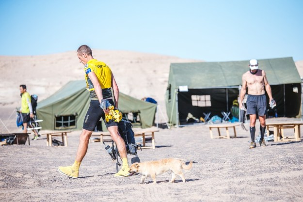 "The dog, who was then named ""Gobi"" in honour of the race, hung out at the camp for the rest of the marathon. Other fellow runners would ration their food to help feed Gobi."