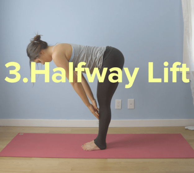 Keep that momentum high while inhaling and bringing your fingertips to your shins for halfway lift pose.