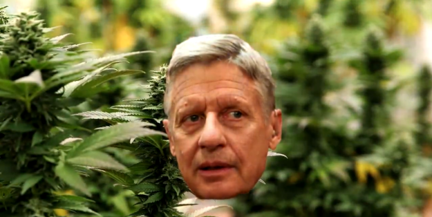 In case you needed further proof that you can, in fact, beat a dead horse, MSNBC's Joe Scarborough made a music video about Gary Johnson, the Libertarian candidate for president who essentially ended his political career on Scarborough's morning show.