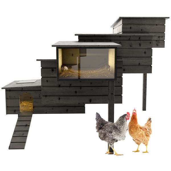 A DESIGNER CHICKEN COOP for your fancy-ass chickens.