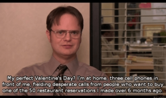 When Dwight described the best way to spend Valentine's Day:
