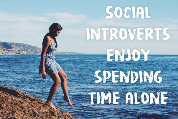 Social introversion is one of four kinds of introversion.
