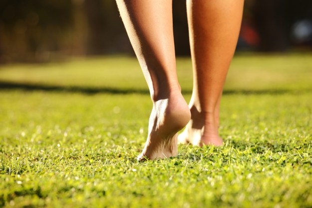 Or heck, even letting their toes go free-range in a grassy park?