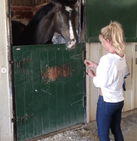 ...dedicating her time to feeding sorry, poor & hungry horses....