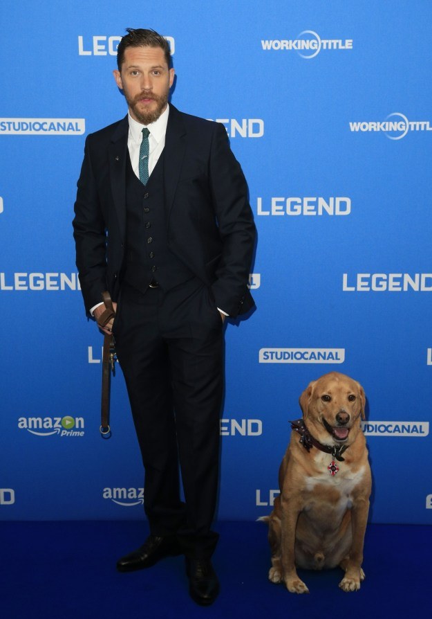 And there's one dog who stole his heart in particular – his pet Woody, who he has often been seen taking to premieres and film sets.