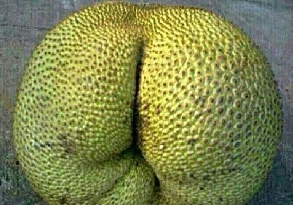 これは単なるエキゾチックなフルーツなのか。
