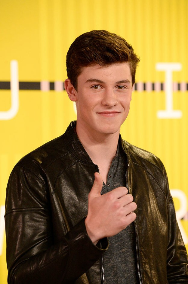 "Ok, this is Shawn Mendes. He's pretty famous. He's got a bunch of hits, like ""Stitches,"" ""Mercy,"" and ""Treat You Better."""