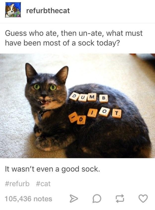This sock monster.