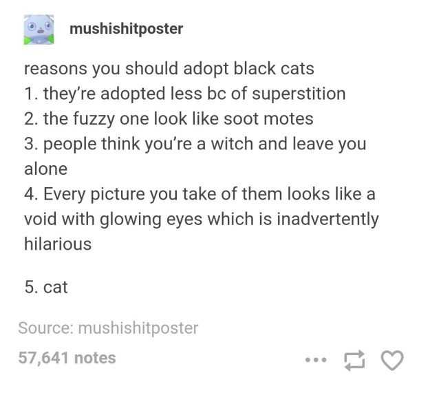 The very best type of cat: black cats.