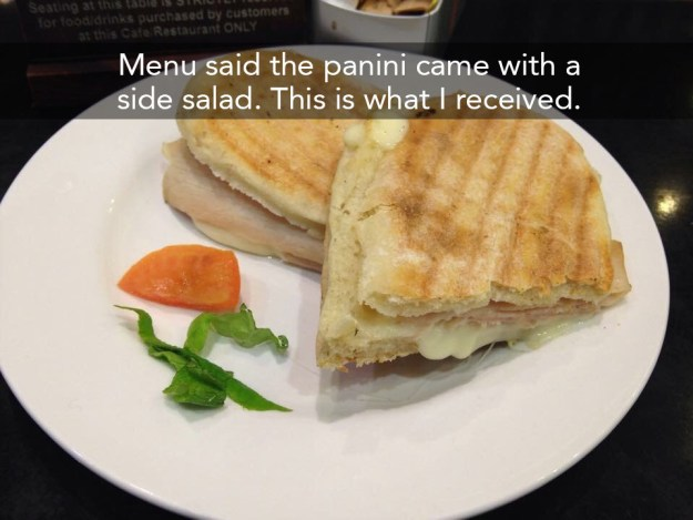 When this panini was served up with the world's saddest side salad.