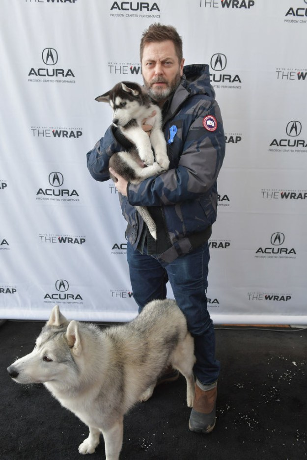 The adult dog, Shazam, is a former Arctic Rescue dog who's found his forever home. But the puppy, who's been nicknamed White Fang, hasn't been adopted yet.