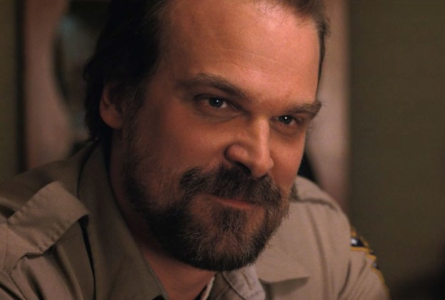 If there's one thing we all know about David Harbour it's that he's pretty much perfect. Okay, fine, you probably also know him as the beloved Chief Hopper on Stranger Things, but that's not what we're here to talk about today.