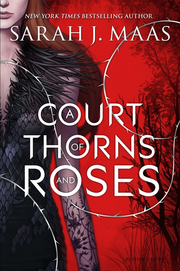 Rhys and Feyre from A Court of Thorns and Roses by Sarah J. Maas