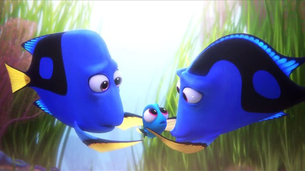 In Finding Dory, the black pigmentation on Dory's father resembles a receding hairline.