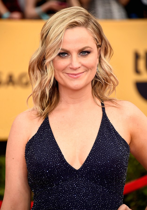So Amy Poehler is one of the best human beings ever, and I live for every single movie/show/project she is in.
