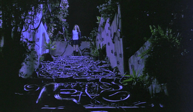 Similarly, all of the worms and snakes in the final scene of The Craft were real.