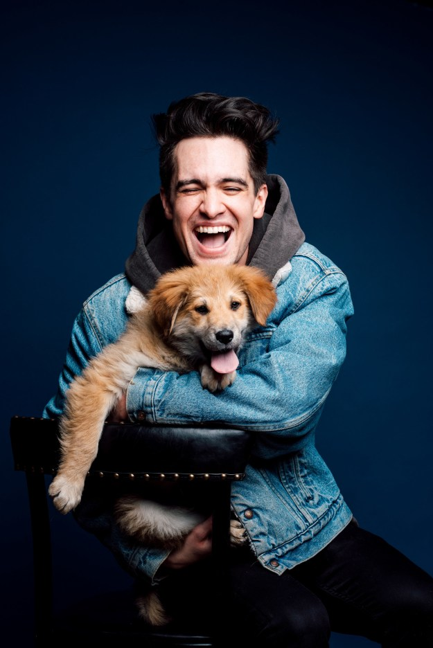 """Panic! at the Disco's new album Pray for the Wicked is out June 22, and you can check out their new single """"Say Amen (Saturday Night)"""" right now!"""
