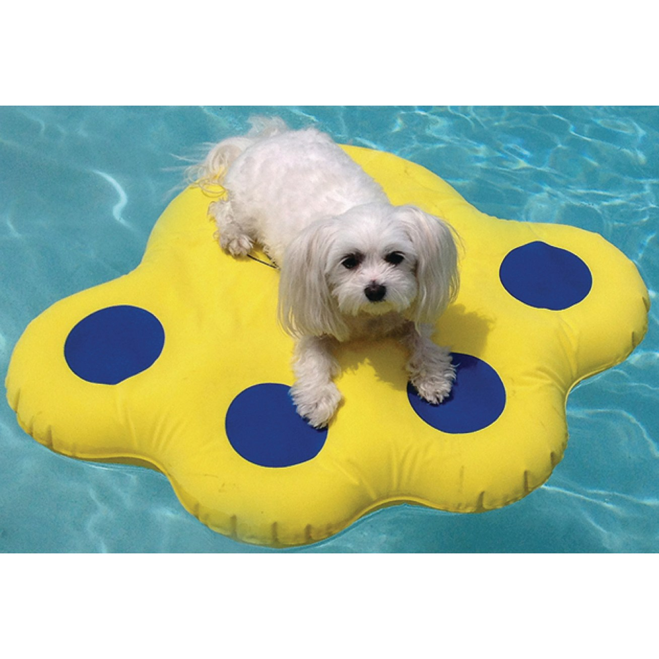 What I said up there ^ about a dog life jacket!Price: .39