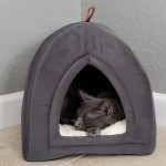 25 Pet Products From Amazon That Ll Basically Function As Decor
