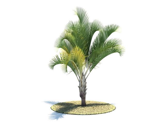 Free 3d Landscape Design Software