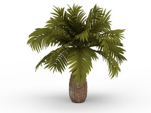 Pineapple Palm Tree 3d Model 3ds Max Files Free Download