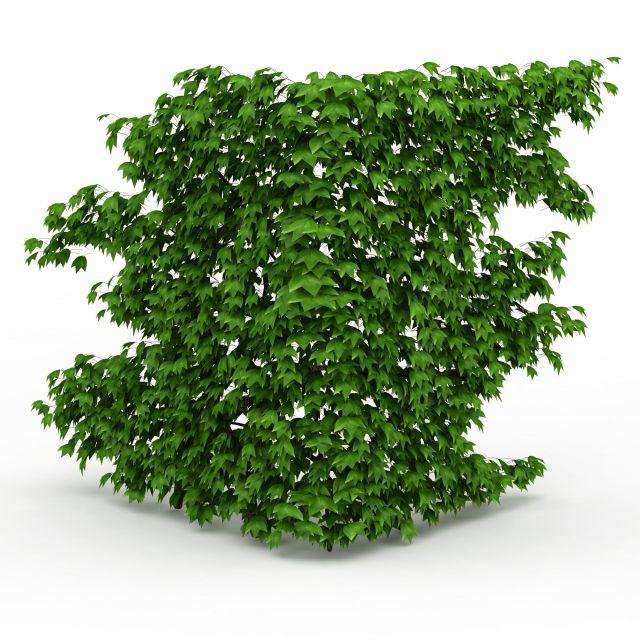 Corner Green Wall 3d Model 3ds Max Files Free Download Modeling 29664 On CadNav