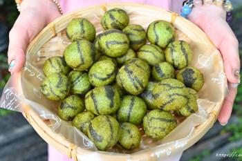 玖肆地瓜球 台中地瓜球大玩創意!是西瓜?是地瓜球?傻傻分不清楚~