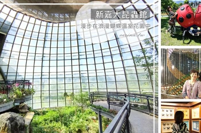 嘉義東區景點|『新嘉大昆蟲館』漫步在浪漫溫室蝴蝶花園中。全台唯一旋轉彩蝶柱
