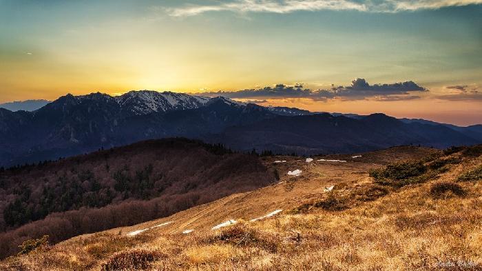 /Tataru/image029.jpg