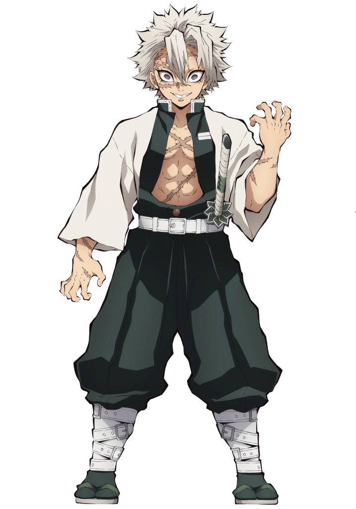 He has defeated multiple demons with his superior swordsmanship, including the father spider demon and the lower rank 5. Check out this transparent Demon Slayer Kishou Arima PNG image
