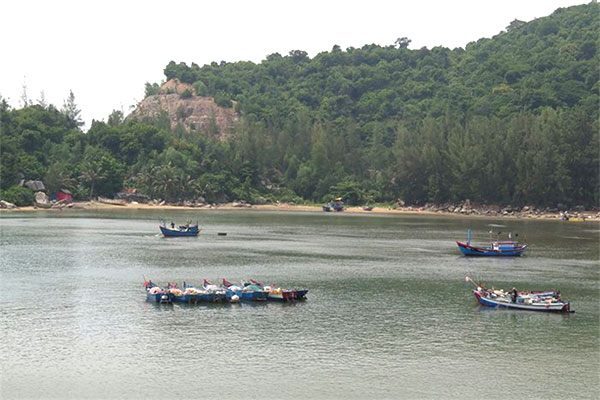Vung Ro Bay, fishermen, seafood, Vietnam economy, Vietnamnet bridge, English news about Vietnam, Vietnam news, news about Vietnam, English news, Vietnamnet news, latest news on Vietnam, Vietnam