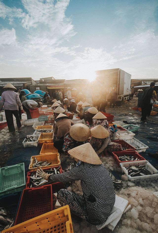 Bustling fishing port in Ba Ria-Vung Tau, social news, vietnamnet bridge, english news, Vietnam news, news Vietnam, vietnamnet news, Vietnam net news, Vietnam latest news, vn news, Vietnam breaking news