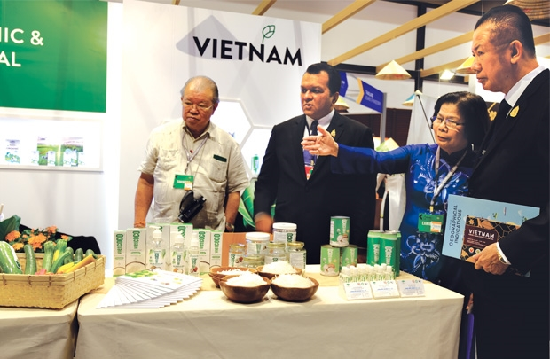vietnam economy, business news, vn news, vietnamnet bridge, english news, Vietnam news, news Vietnam, vietnamnet news, vn news, Vietnam net news, Vietnam latest news, Vietnam breaking news, AEC, import tariff cut, export turnover