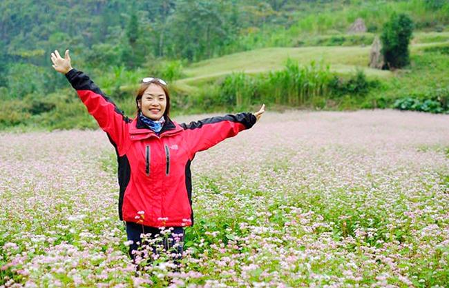 Buckwheat flowers bloom in Ha Giang, travel news, Vietnam guide, Vietnam airlines, Vietnam tour, tour Vietnam, Hanoi, ho chi minh city, Saigon, travelling to Vietnam, Vietnam travelling, Vietnam travel, vn news