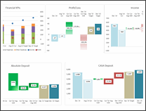 KPI Dashboard by Riekie Cloete - snapshot 1