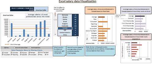 Dashboard to visualize Excel Salaries - by Yogesh Gupta - Chandoo.org - Screenshot