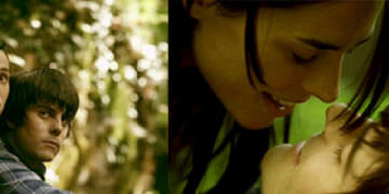 [2011金馬影展]《情慾三角石》