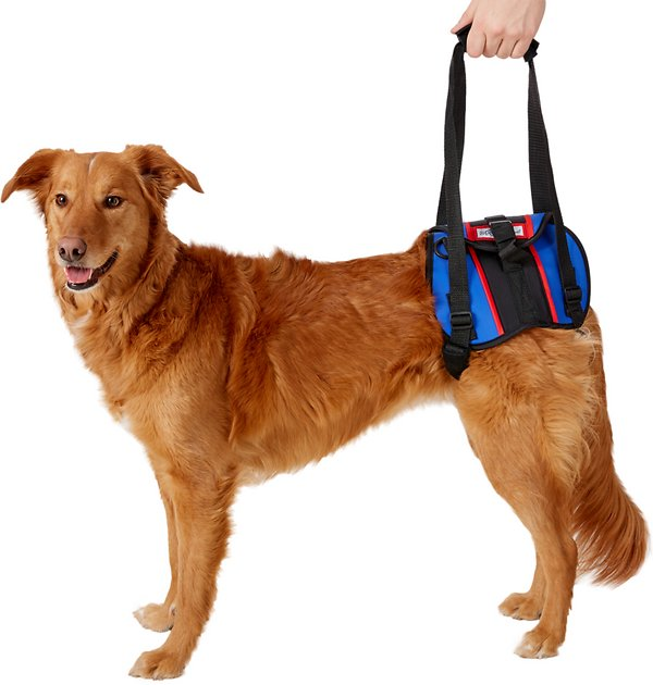 Handicappedpets Rear Lift Combo Dog Harness Large
