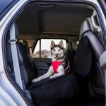 Barksbar Original Waterproof Car Seat Cover Extra Large Chewy Com