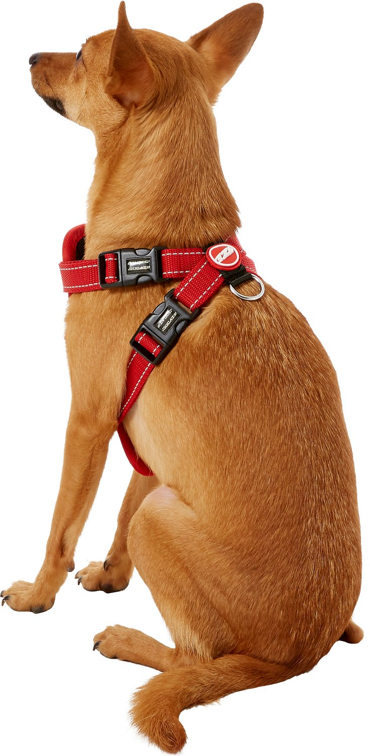 Ezydog Chest Plate Dog Harness Red Small