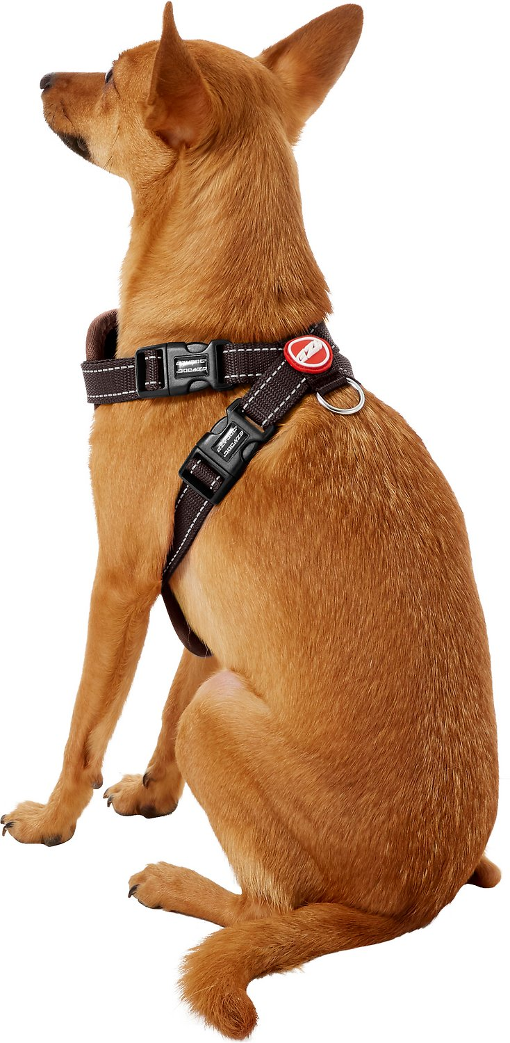 Dog Harness Vest Product