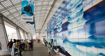 生命教育必修課 海洋生物探究在名古屋港水族館 nagoyaaqua